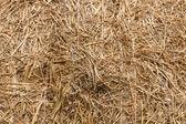 Haystack. — Stock Photo