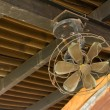 Ceiling Fan — Stock Photo