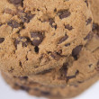 Chocolate chip cookies  — 图库照片