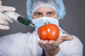 Genetic modification — Stock Photo