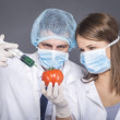 Genetic modification experiment — Stock Photo