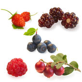 Collage of raspberries, blueberries, blackberries and strawberries — Stock Photo