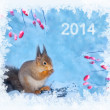 Stock Photo: Christmas winter background with squirrel