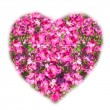 Stock Photo: Heart shaped bouquet