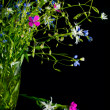 Bouquet of wild flowers on a black background. — Stock Photo #48978699