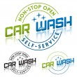 Car wash — Stock Vector #31484997
