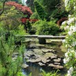 Bridges over pond in Japanese garden — Stock Photo