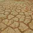 Stock Photo: Arid soil