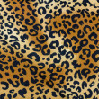 Cheetah texture — Stock Photo