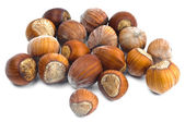 Hazelnuts in the shell — Stock Photo