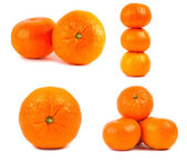 Set of mandarine isolated — Stock Photo