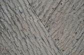 Background of a tree bark — Stock Photo