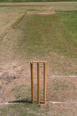 Cricket pitch — Stock Photo