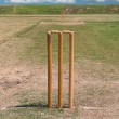 Stock Photo: Cricket pitch and blue sky