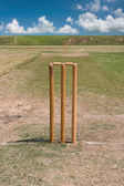 Cricket pitch and blue sky — Stock Photo