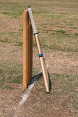 Cricket bat and wikets — Stock Photo