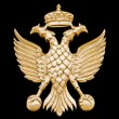 Stock Photo: Golden two-headed eagle in black background.
