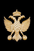 Golden two-headed eagle in black background. — Stock Photo