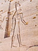 Egyptian god Horus, carved in temple wall — Stock Photo