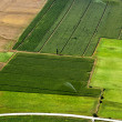 Stock Photo: Irrigated cropland, aerial view