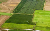 Irrigated cropland, aerial view — Stock Photo