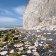 Royalty-Free Stock Photo: The White Cliffs