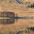 Reflections on Buttermere — Stock Photo