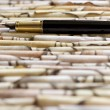 Fountain pen on paper — Stockfoto #24372993