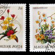 ������, ������: Postage stamps with the image of bouquets of flowers