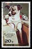 Znaczek pocztowy z wizerunkiem psa — Zdjęcie stockowe
