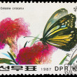 Stock Photo: KORE- CIRC1987: stamp printed by KOREA, shows butterfly