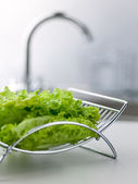 Green lettuce with blurred tap on the background — Stock Photo