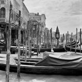 Venice, Italy. Gondolas on the Grand Canal — Stock Photo