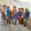 Himalaya. Tibet. Spiti Valley. Dhankar Gompa. — Stock Photo #27285939