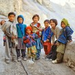 Himalaya. Tibet. Spiti Valley. Dhankar Gompa. — Stock Photo