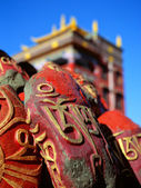 Himalaya. Tibet. India. Palpung Sherab Ling Monastery. — Stock Photo