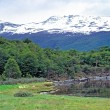 Tierra del Fuego National Park, Argentina — Stock Photo
