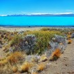 Lake Argentina (Lago Argentino), El Calafate, Patagonia — Stock Photo
