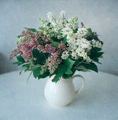 Lilac flowers, still life — Stock Photo