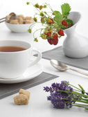 Cup of tea with wild strawberries and lavender — Stock Photo