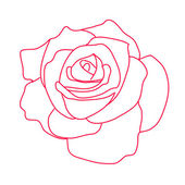 Drawing a red rose on a white background — Stockvector