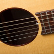 Professional acoustic guitar — Stock Photo #27005863