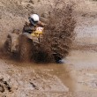 The driver ATV — Stock Photo
