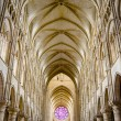 Stock Photo: Nave of Gothic Church