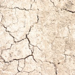 Cracked earth — Stock Photo #34348763