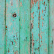 Old fence — Stock Photo #39905243