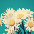 Daisies against blue sky — Stock Photo #40133237