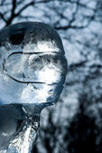 Ice figure — Stock Photo