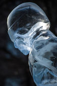 Ice figure — Stock Photo