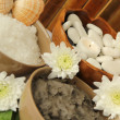 Spa with mud and marine salt — Stock Photo
